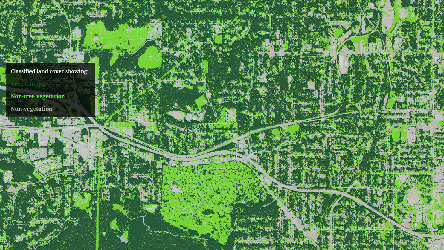 Screen shot of the Atlanta Urban Tree Canopy tool.